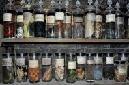 Props - potions ingredients in Snape's classroom